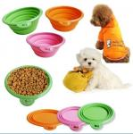 Silicone Folded Pet Bottle